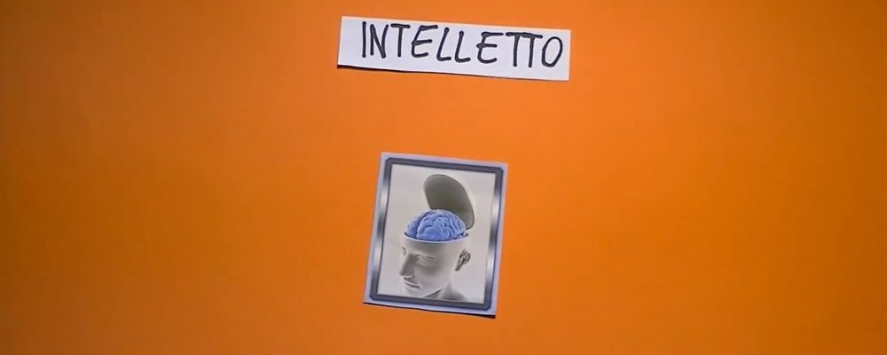 Catechesi 1° Media – L' intelletto